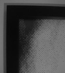 A grey canvas.jpg